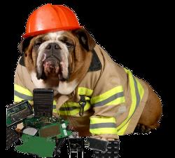 Dog behind broken radio parts.